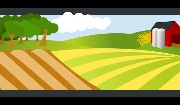 Azienda Agraria